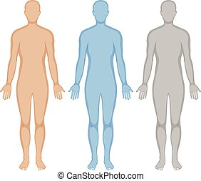corporal, cores, esboço, human, três