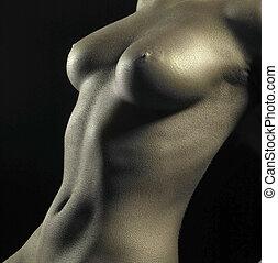 corporal, dourado, detalhe, femininas