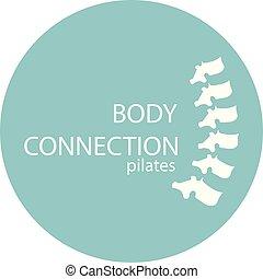 corporal, espinha, abstratos, modernos, -, conexão, vetorial, saúde, crescendo, logotipo, símbolo, osso, cuidado