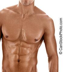 corporal, excitado, pelado, sujeito, muscular