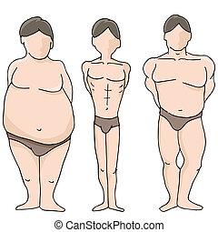 corporal, formas, macho