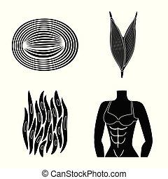 corporal, jogo, celas, web., ilustração, vetorial, human, icon., símbolo, estoque