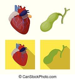 corporal, jogo, médico, web., ilustração, vetorial, human, icon., símbolo, estoque