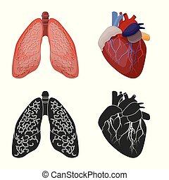 corporal, jogo, médico, web., vetorial, desenho, human, logo., símbolo, estoque