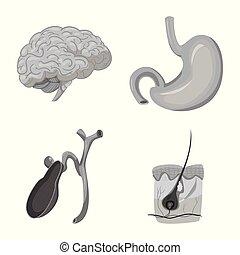 corporal, jogo, sinal., web., exame médico ilustração, vetorial, human, símbolo, estoque