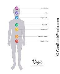 corporal, sete, energia, chakras