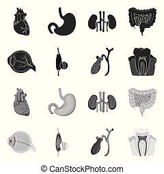 corporal, stock., médico, símbolo., cobrança, vetorial, desenho, human, ícone