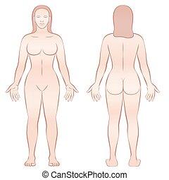 corporal, vista, costas, frente, femininas