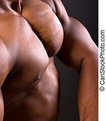 corps, africaine, closeup, musculaire, homme