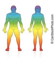 corps, arc-en-ciel, gradient, couleur, femme, peau, mâle