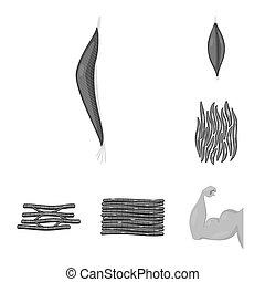 corps, ensemble, illustration., signe., bitmap, conception,...