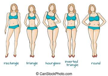 corps, femme, formes, cinq, femme, figures, types