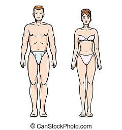 corps, femme saine, figures, homme