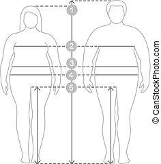 corps, homme, entiers, measurements., parameters, proportions., vêtements, lignes, mesures, excès poids, longueur, plus, contours, humain, mesure, femmes, taille