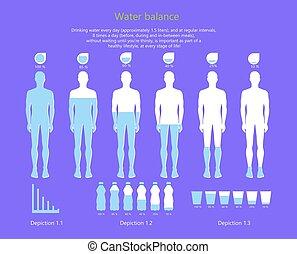 corps, illustration, eau, vecteur, humain, équilibre