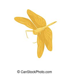 corps, libellule, paires, plat, deux, long, wings., grand, clair, vecteur, conception, jaune, fast-flying, petit, insect.
