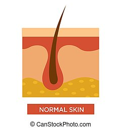 corps, normal, sain, cheveux, peau, structure