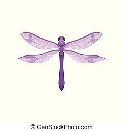 corps, plat, libellule, pourpre, fast-flying, wings., beau, vecteur, petit, insecte, icône