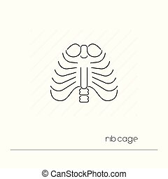 corps, ribs., contour, pictogramme, isolated., cage, symbole...