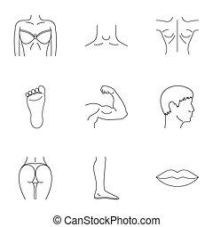 corps, style, contour, icônes, ensemble, humain