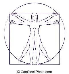corps, vitruvian, proportions, femme, femme