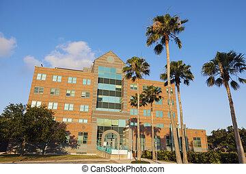 Corpus Christi City Hall. Corpus Christi, Texas, USA.