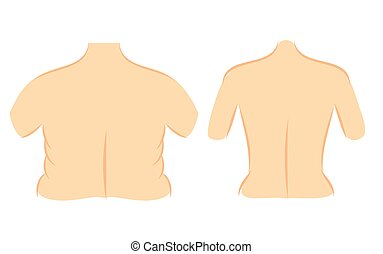 corrección, línea, cintura