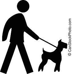correia, cão