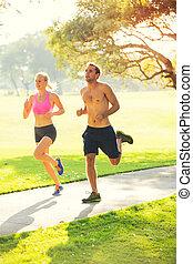 correndo, insieme, coppia, parco