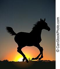 correndo, silhouette, cavallo