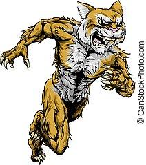 correndo, sport, wildcat, mascotte