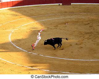 Corrida - Matador in action