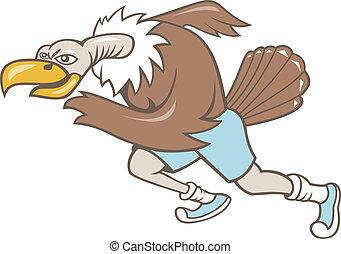 corridore, correndo, avvoltoio, poiana, cartone animato
