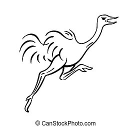 corriente, vector, avestruz