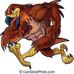 corriente, vector, caricatura, halcón, mascota