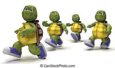 corriente, zapatillas, tortugas