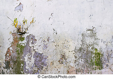 Corroded Wall - 2 - A cor