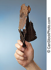 Man holding a rusty piece of metal in his hand