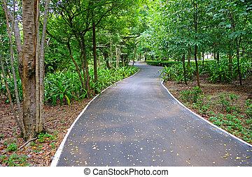 corsia bicicletta, parco