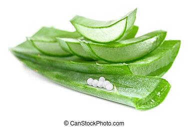 cortado, aloe, folhas, com, homeopatia, globules
