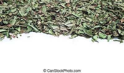 cortado, hierba, fondo blanco, estragón