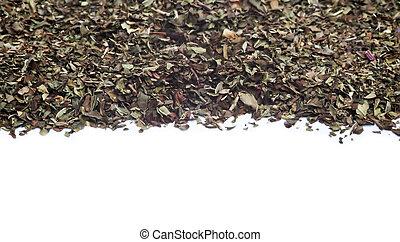 cortado, hojas, menta, fondo blanco
