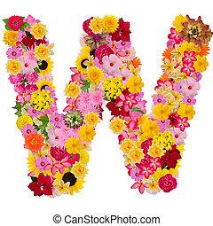 cortando, conceito, w, alfabeto, isolado, experiência., abc, flor, letra, caminho, logotipo, branca, tipo