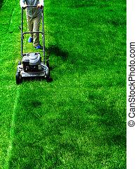 cortando gramado, capim