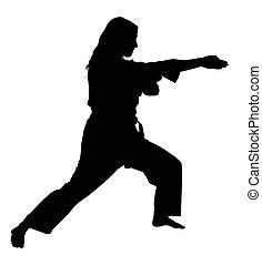 cortando, mulher, silueta, artes, marcial, caminho