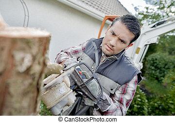 cortar con la sierra, en, un, tronco de árbol