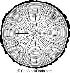 corte, árvore toca, experiência., tronco, serra