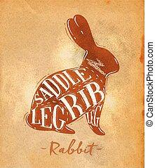 corte, arte, esquema, conejo