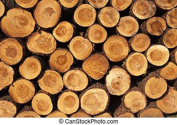 corte, dar, troncos árvore, pilha, yearrings, agradável, ...
