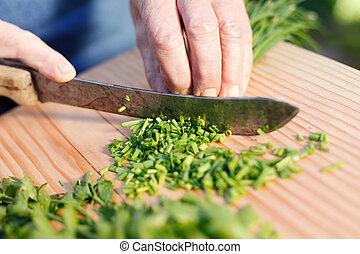 corte, hojas cebolleta